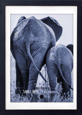 LOVE A FOX - Poster - Baby Elephant Colour - Blue