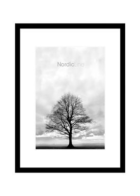 Nordic Line - Frames - Slim - Solid - Wood - Matt Black / 30 x 40