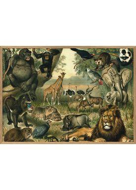 The Dybdahl Co - Poster - African Fauna. Horizontal #2910H - Fauna