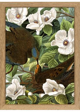 The Dybdahl Co - Poster - Animals #RC114 - Oak Frame