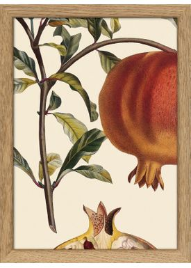 The Dybdahl Co - Poster - Plants #RC143 - Oak Frame