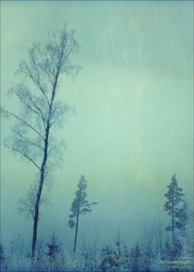 ViSSEVASSE - Poster - Dan Isaac Wallin - Torsö III - Torsö III
